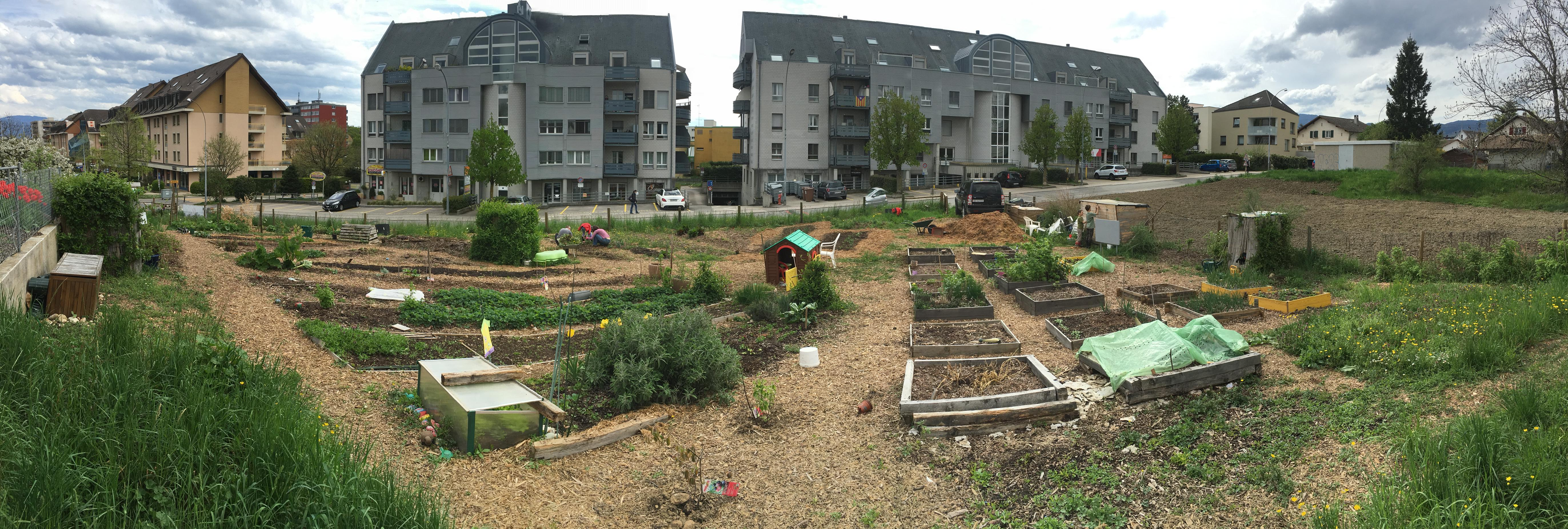 how to start a community garden - How To Start A Community Garden